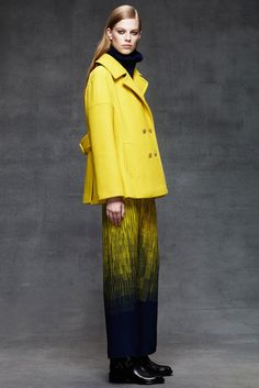 Take a look to Alberta Ferretti Pre-fall 2014-15collection: the fashion accessories and outfits seen on New York runaways.