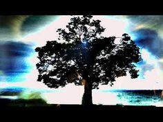 Albinoni - Adagio in G Minor (Tomaso Albinoni) Klassische Musik - Classical Music - Klasik Müzik - http://music.tronnixx.com/uncategorized/albinoni-adagio-in-g-minor-tomaso-albinoni-klassische-musik-classical-music-klasik-muzik/
