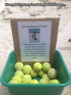 VERY cool thing to do!  Or put out a collection box to collect tennis balls to donate to a local shelter!!!!