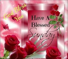 God Bless You Have A Blessed Sunday good morning sunday sunday quotes good morning quotes happy sunday good morning sunday quotes happy… Blessed Sunday Quotes, Blessed Sunday Morning, Good Morning Sunday Images, Sunday Morning Quotes, Sunday Prayer, Have A Blessed Sunday, Good Morning Prayer, Morning Blessings, Good Morning Friends