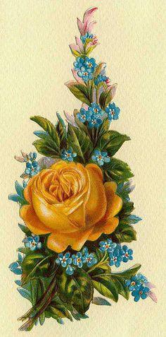 golden rose - vintage card