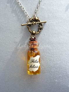 Collier Fiole ( pirex ) félix  , Harry Bijoux Harry Potter, Objet Harry Potter, Theme Harry Potter, Harry Potter Gifts, Harry Potter Bricolage, Glass Bottles With Corks, Bottle Necklace, All Craft, Polymer Clay Jewelry