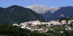 Vieni a raccogliere le olive in Val di Comino