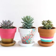 An easy project for an idle afternoon. Color and pattern options are endless! Fill with your favorite succulent, herb, or flowering plant.