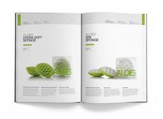 product brochure layout