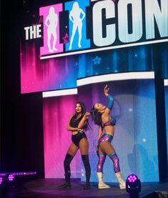 Billie Kay and Peyton Royce Wrestling Divas, Women's Wrestling, Peyton Royce, Dana Brooke, Wwe Female Wrestlers, Wwe Girls, Wwe Wallpapers, Charlotte Flair, Wwe Womens