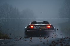 12th Rally Revival Valpantena: Cold, Wet And Awesome   Hirundo