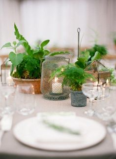 20 Wedding Themes for Every Bridal Style. Eco-Friendly/Natural: Just because. Potted Plant Centerpieces, Succulent Wedding Centerpieces, Wedding Plants, Floral Centerpieces, Potted Plants, Centerpiece Ideas, Wedding Flowers, Wedding Themes, Wedding Decorations