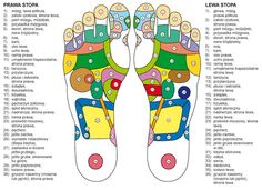 Notice: Undefined variable: desc in /home/www/weselnybox.phtml on line 23 Foot Reflexology, Doula, Promotion, Education, Scripts, Ikon, Smoothies, Hacks, Drink
