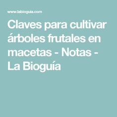 Claves para cultivar árboles frutales en macetas - Notas - La Bioguía