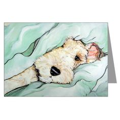 1 Jack Greeting Cards (Pk of Napping Wire Fox Terrier Greeting Cards (Pk of by Tailendproductions - CafePress Fox Terriers, Chien Fox Terrier, Wirehaired Fox Terrier, Wire Fox Terrier, Airedale Terrier, Dog Illustration, Illustrations, Animals And Pets, Cute Animals