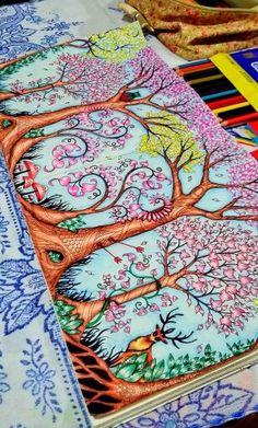 Trees Owl. Enchanted Forest. Árvores Coruja. Floresta Encantada. Johanna Basford