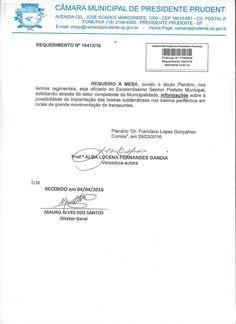 Profª Alba Lucena: Requerimentos: Informações sobre implantação de li...