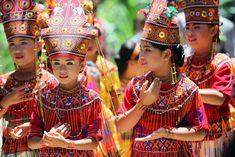 Mathias est le spécialiste des destinations aventure de Bali Autrement depuis 2012. Il partage aujourd'hui avec nous sa passion pour une destination à la fois réputée par certains aspects et encore mystérieuse par d'autres : Sulawesi. Connue anciennement comme l'île de Célèbes, cette destination a énormément à offrir. Voyons quoi et comment... Captain Hat, Destinations, Passion, Travel, Adventure, Travel Destinations