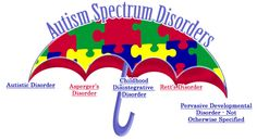 All children with Autism are not the same. As you can see a wide range of disorders which in parallel means a wide range of behaviors and symptoms.