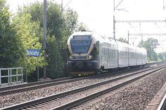 Leo Express Stadler Flirt Flirting, Leo, Train, Lion, Zug, Strollers