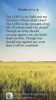 The LORD is my light and my salvation; The LORD is the strength of my life; of whom shall I be afraid? Though an host should encamp against me, my heart shall not fear: though war should rise against me, in this will I be confident. John 14 1 3, Matthew 24 12, Daily Bible Inspiration, 1 Timothy 6, Psalm 147, Lamentations, My Salvation, Fear Of The Lord, Believe In God