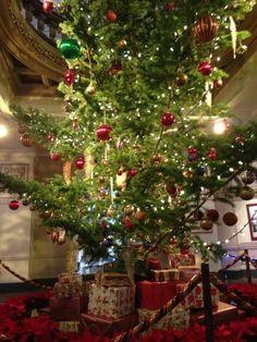 A Christmas tree in the Rotunda at the BC Legislature. Photo courtesy of Naomi Yamamoto @naomiyamamoto