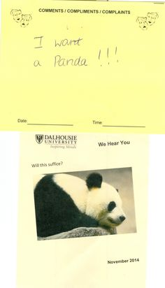 Who doesn't want a panda?