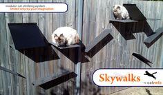 Skywalker cat climbers