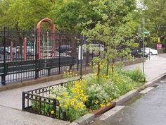 NYC has committed to using green infrastructure in combination with grey infrastructure to fix sewage overflows.