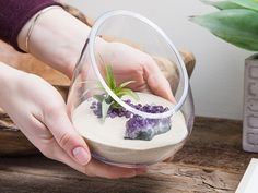 Cut Glass Gem Terrarium | The Grommet