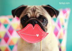 Feliz dia do beijo ;*