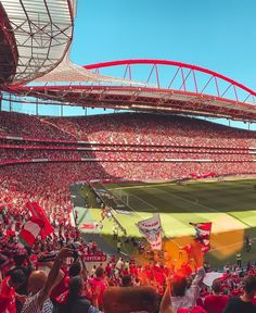 Benfica Wallpaper, Liverpool Fc Wallpaper, Lets Celebrate, Neverland, Fifa, Fair Grounds, Football, Grande, Places
