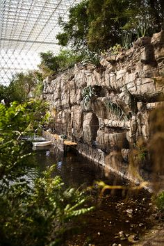 The Rainforest, inside the Biosphere 2 in Oracle, Arizona. How's this for a water feature...One Million Gallons, complete with a coral reef!