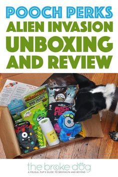 What's that unidentified object flying in the sky? Is it a plane? A rogue dog turd? No it's just this month's Pooch Perks Alien Invasion box! Check out this…