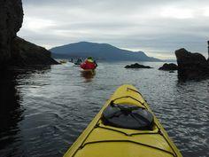 Kayaking Orcas