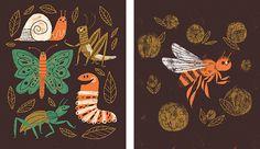 Gone Buggy Cards - Lydia Nichols Illustration + Design + Anthropomorphizing Creative Illustration, Children's Book Illustration, Book Illustrations, Childrens Books, Graphic Design, Drawings, Cards, Painting, Inspiration
