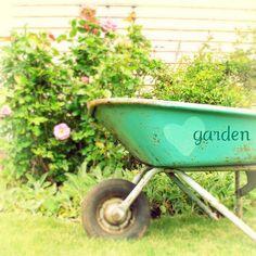 ❤GARDEN wheelbarrow!
