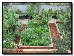 Image detail for -Raised Garden Beds « Deep Green Permaculture Raised Garden Bed Plans, Building Raised Garden Beds, Raised Beds, Benefits Of Gardening, Organic Gardening, Herb Gardening, Gardening Blogs, Gardening Vegetables, Urban Gardening
