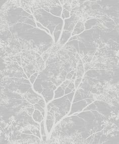 Whispering Trees by Albany - Grey : Wallpaper Direct Grey Wallpaper Living Room, Hall Wallpaper, Wallpaper Warehouse, Silver Wallpaper, Glitter Wallpaper, Bathroom Wallpaper, Grey Wallpaper Lounge, Grey Wallpaper Nursery, Livingroom Wallpaper Ideas