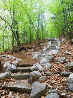 Mount Chocorua ~ Champney Falls Trail ~ New Hampshire ~ May 18, 2015. Photo taken by:  Vanessa N. Moylan.  If you like and repin this photo, thank you, but please keep the description.  Thank you!! :^)