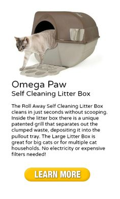 Find out what Omega Paw Self Cleaning Litter Box is right here -- Omega Paw Self Cleaning Litter Box --- http://omegapawselfcleaninglitterbox.com/