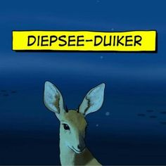 Idees vol vrees. Whatsapp Logo, Afrikaans, My Family, Haha, Clever, Jokes, Humor, Funny, Movie Posters