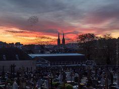 novembre 2017   les flèches de la cathédrale Saint-Corentin et vol d'étourneaux à l'aube  © Paul Kerrien https://en-photo.fr Finistère Bretagne MyFinistere