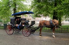 Horse Carriage ride in Brugges