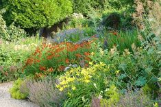 The beauty and diversity of the plants selected for this informal garden will get you to gaze at them all summer long. Easy to grow, they will bloom in succession for a long-lasting floral show.