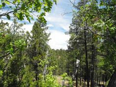 Enjoy incredible views from this 2 acre parcel in the Ponderosa Pines to build your mountain retreat.  Water power and phone available. Cash only Homes only no camping.  You will love the privacy and cooler temperatures up on the Mogollon Rim and the relaxed atmosphere.