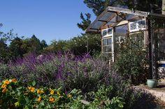 UC Master Gardener Program of Sonoma County - May in Sonoma County