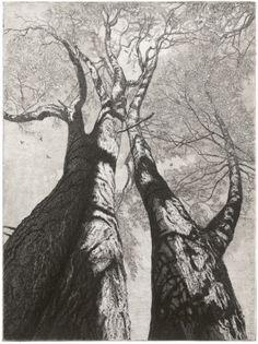 Reinder Homan(Dutch, b.1950)- Wilg 2012
