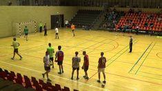 Handball inspiration Danish Symposium 2015