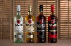 Что такое бакарди - технология производства и крепость напитка, виды рома и как правильно пить