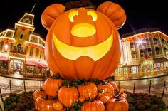 Guide to Halloween Time at Disneyland 2015