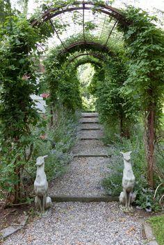 ~ Bunny William's Garden