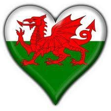 Cymru am byth xxxxx Welsh Castles, Castles In Wales, Welsh Sayings, Funny Sayings, Welsh Language, Problem Solving Activities, Welsh Dragon, Cardiff Wales, Normandy France