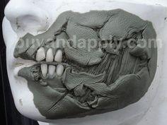 sculpting a black eye prosthetic - Google Search